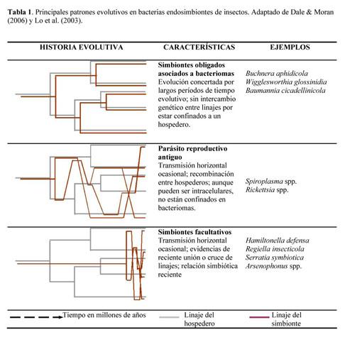 parásitos y bacterias hospederas