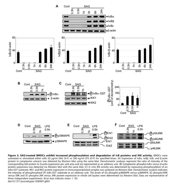 Gale Academic OneFile - Document - Leishmania donovani