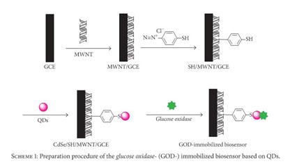 Gale Academic OneFile - Document - Electrochemiluminescence