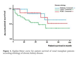 enfermedad renal en etapa terminal diabetes tipo 1