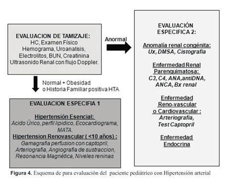 Disrafismo emedicina hipertensión