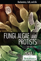 Fungi, Algae, and Protists, ed. , v.