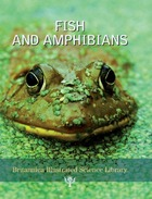 Fish and Amphibians, ed. , v.