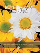 Plants, Algae, and Fungi, ed. , v.