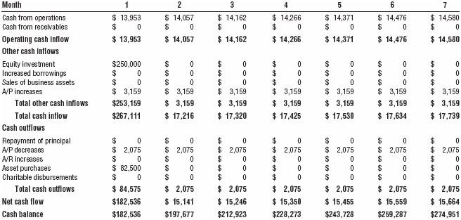 Cash flow analysis (first year)