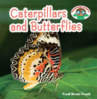 Caterpillars and Butterflies, ed. , v.