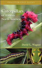 Caterpillars of Eastern North America, ed. , v.