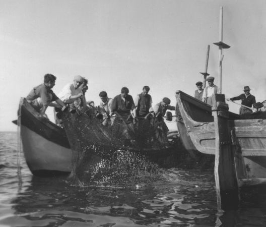 Turkish fishermen in the Marmara Sea using nets made possible as a result of Marshall Plan assistance, 1951. (National Archives and Records Administration)