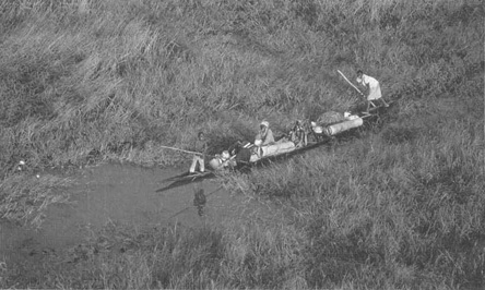 Young men steer a canoe down the River Niger