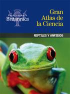 Reptiles y anfibios, ed. , v.