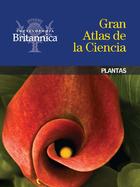 Plantas, ed. , v.