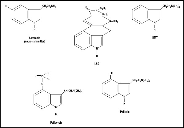 Figure 2. Indole-type hallucinogens.