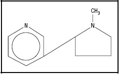 Figure 1. Chemical structure of nicotine.