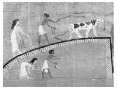 Working the fields in ancient Egypt, as depicted in the Book of the Dead of Heruben, circa 1069-945 B.C.E. © GIANNI DAGLI ORTI/CORBIS.
