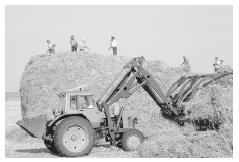Wheat harvest on a collective farm near Lvov, Ukraine, in 1991. © PETER TURNLEY/CORBIS.