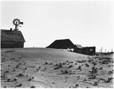 This dust-covered farm, photographed in 1938 near Dalhart, Texas, remained occupied, but many in the area were abandoned during the Dust Bowl years. LIBRARY OF CONGRESS, PRINTS & PHOTOGRAPHS DIVISION, FSA/OWI COLLECTION