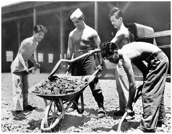 Banned from military service by the U.S. government, nisei volunteers joined to form a labor brigade they called the Varsity Victory Volunteers. They performed mainly manual labor to prove their loyalty. (AP/Wide World Photo)