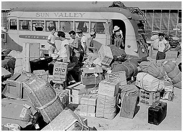 Japanese American internees collect their baggage at the Minidoka concentration camp in Idaho, August 1942. (National Archives)