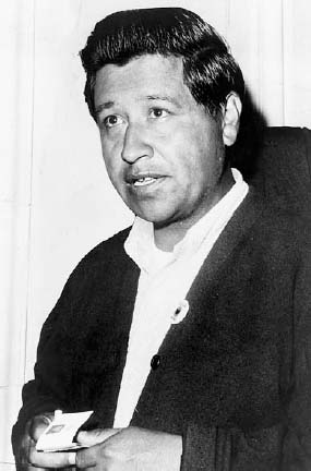 César Chávez organized the first effective migrant worker union in the United States. His political skill and his unswerving dedication to one of society's most unprotected sectors made him a popular