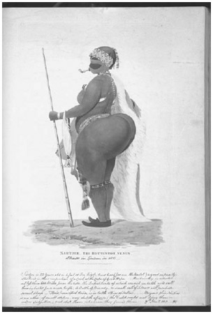Illustration and Description of Saartje Baartman, 1811. Hottentot Venus was the label given to a series of women who were exhibited in sexually suggestive ethnic curiosity shows in England and France in the