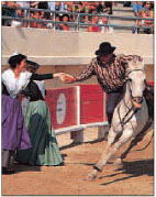 Rodeo-style games in the arena