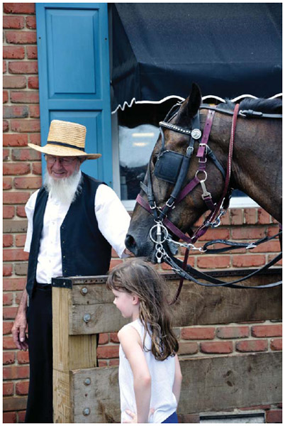 An Amish man in Amish Country, Pennsylvania.