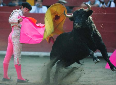 Bullfighting critics point out that, in addition to the killing of the bull, many horses also die in the ring after being gored by enraged bulls.