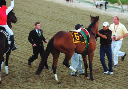 Barbaro, winner of the 2006 Kentucky Derby, pulls up lame with an injury to his right rear leg at the start of the Preakness Stakes at Pimlico Race Course in Baltimore. Despite multiple surgeries, Barbaro did not survive his broken leg.