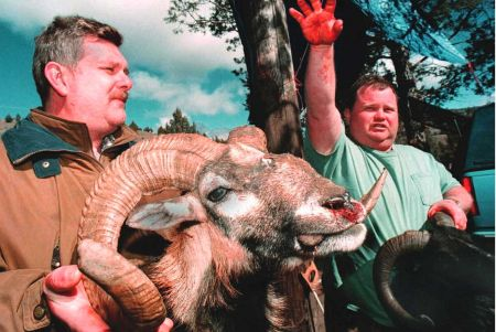 Two men display a black Hawaiian sheep, killed during a canned hunt of captive, exotic animals on a private Oregon game reserve.