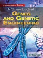 A Closer Look at Genes and Genetic Engineering, ed. , v.