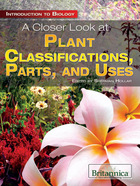 A Closer Look at Plant Classifications, Parts, and Uses, ed. , v.