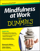 Mindfulness at Work For Dummies®, ed. , v.