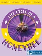 Honeybee, ed. , v.