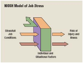 Stress can increase the likelihood for additional complications in the workplace such as increased risk of injury or illness.