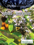 Biomes and Ecosystems, ed. , v.