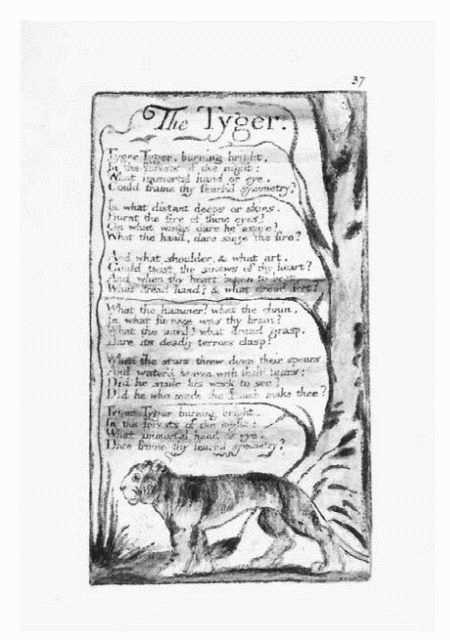 Illustration of the poem The Tyger by William Blake