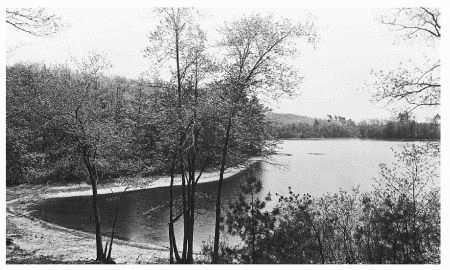 Henry David Thoreaus Walden Pond in Concord, Massachusetts