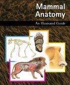 Mammal Anatomy, ed. , v.