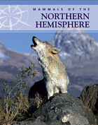 Mammals of the Northern Hemisphere, ed. , v.