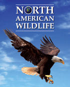 North American Wildlife, ed. , v.