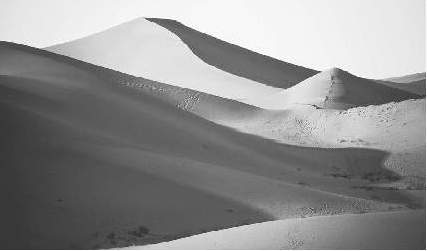 The Algerian Sahara Desert is the setting for Camuss novel The Stranger.