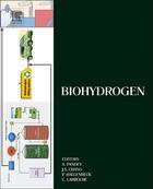 Biohydrogen, ed. , v.