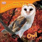 Owl, ed. , v.