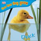 Duck, ed. , v.