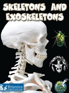 Skeletons and Exoskeletons, ed. , v.