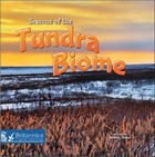 Seasons of the Tundra Biome, ed. , v.