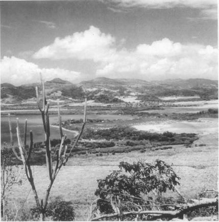 Beaches and coast of Antigua, native land of Jamaica Kincaid.