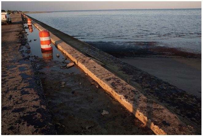 Oil from the Deepwater Horizon oil spill in the Gulf of Mexico in 2010 covers a stretch of Mississippi shoreline.