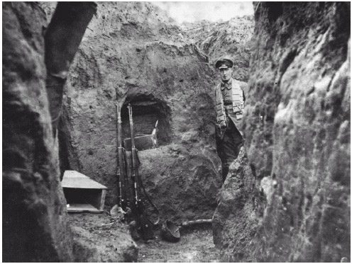 An especially deep German trench in World War I. Trenches provided some shelter during attacks but were also infested with rats, lice, and frogs.
