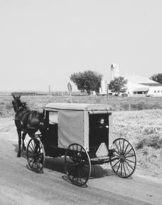 Present-day Amish in Lancaster, Pennsylvania. The Amish are a portion of the Pennsylvania Dutch and have maintained a culture apart from mainstream American society. Reproduced by permission of Mr. James Blank.